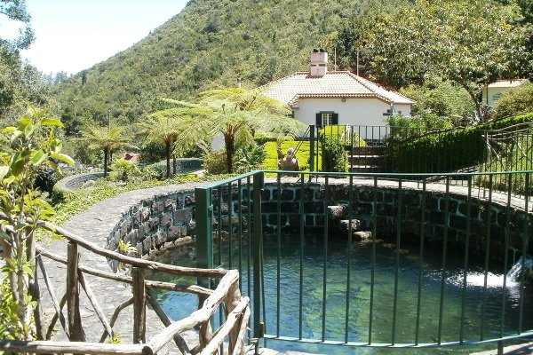 Optional Tours in Madeira